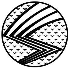 Hawks Swarm Logo